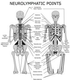 puntos neurologicos